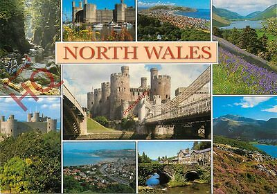 Picture Postcard-:North Wales (Multiview)