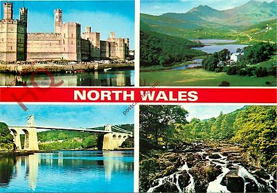 Picture Postcard:-North Wales (Multiview)