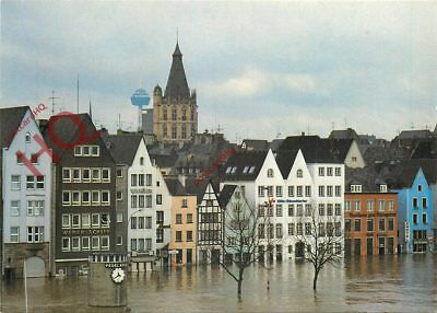 Picture Postcard: Floods, Cologne, Koln?