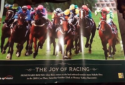 Homeward Bound makybe diva  the joy of racing horse racing poster