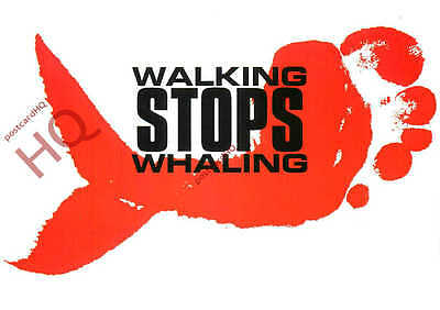 Picture Postcard: Greenpeace, Walking Stops Whaling