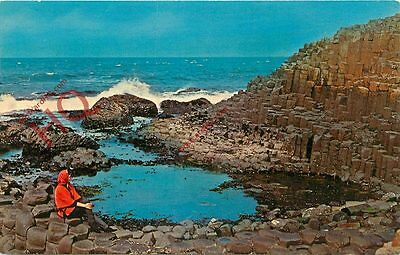 Picture Postcard, Giant's Causeway