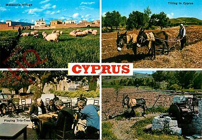 Picture Postcard, Cyprus (Multiview)