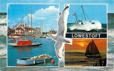 Picture Postcard, Lowestoft (Multiview) Seagull