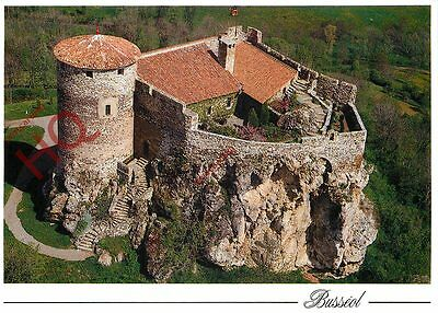 Picture Postcard:-Busseol, Chateau Feodal