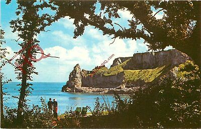 Picture Postcard; Lydstep Haven