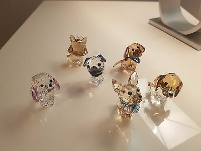 Swarovski Puppies set
