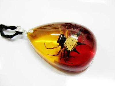 cool insect spider fashion design pendants  free ship bwc-03