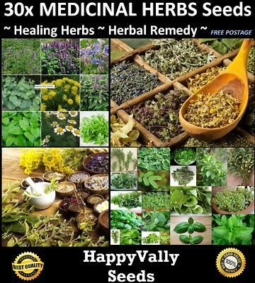 ~ HEALING HERBS SEED PACK ~ Medicinal Herbs Seeds - 30x Packets, Herbal Remedy