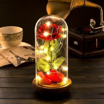 Beauty And The Beast Enchanted Rose Glass Dome LED Wedding Gift Home Office Deco