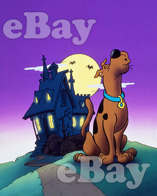 Rare! SCOOBY DOO Cartoon Color TV Photo HANNA BARBERA Studios