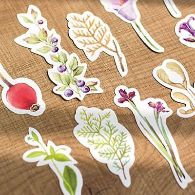 30pcs/lot Plants Book Marks Paper Bookmark Stationery Office Gifts Q
