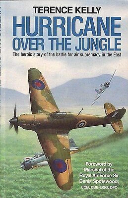 Hurricane over the Jungle by Terence Kelly