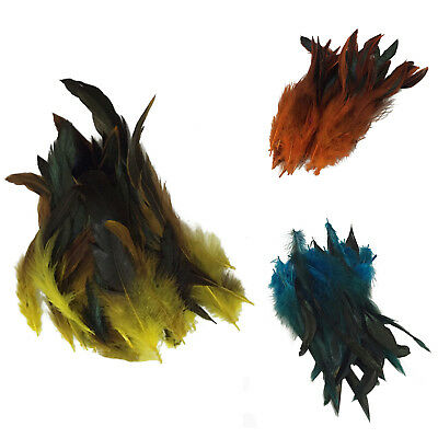50 Beautiful cock feathers 12-18cm / 4-7inch H3W3