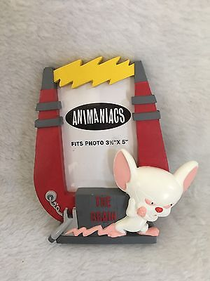 """Warner Bros Animaniacs Pinky and The Brain 3.5"""" x 5"""" Photo / Picutre Frame"""