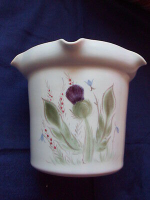 Rare Buchan Stoneware Scotland Thistle plant pot fluted planter duck egg blue