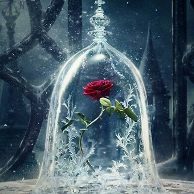 Beauty And The Beast Rose Flower Vase 5D Diy Diamond Painting