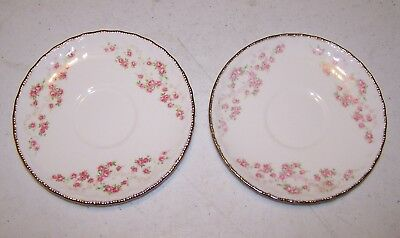 Pope Gosser Florence (Scalloped Edge) Saucer - Set of 2