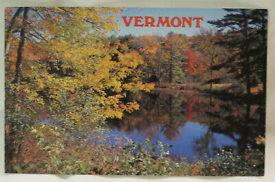 Autumn Reflections Pond Scene Vermont Postcard