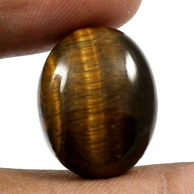 20.25 cts 100% Natural Untreated Tiger Eye Gemstone Oval Shape Loose Cabochon