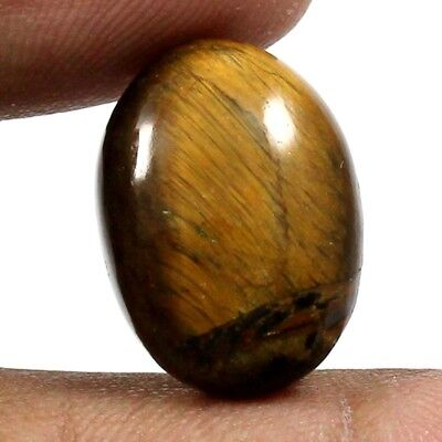 15.75 cts 100% Natural Untreated Tiger Eye Gemstone Oval Shape Loose Cabochon