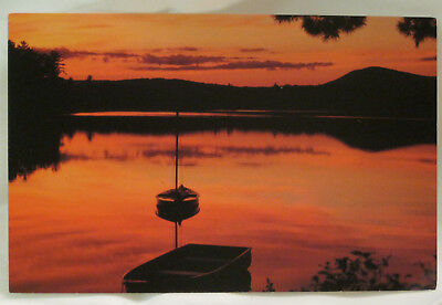 New England Harbor Sunset Postcard