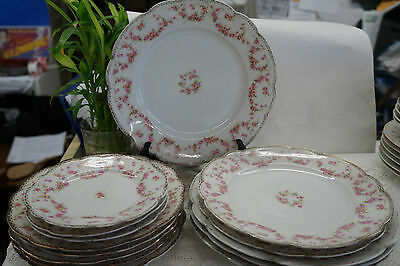 Bridal Rose MZ Austria Dinnerware Dishes Lot of 14 Pieces