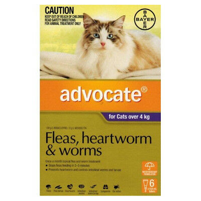 New Advocate (6 Doses) For Cats Over 4 KG Pet