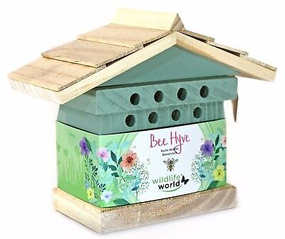 Bee Hyve Beehive Bees Bug Box House Garden Insect Hibernation Winter Environment