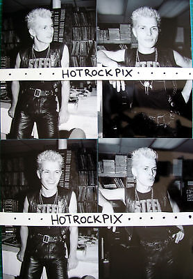12 Different 4X6 Photos Of Billy Idol In Concert 1982