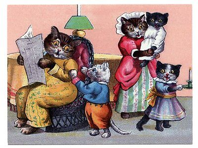 modern cat postcard Thompson dressed cats read newspaper take kittens to bed