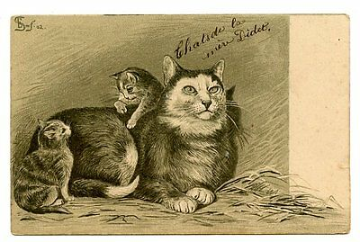 vintage cat postcard lovely mum cat & playing kittens 1905