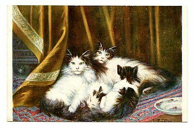 vintage cat postcard LeRoy family of beautiful longhaired cats snuggling