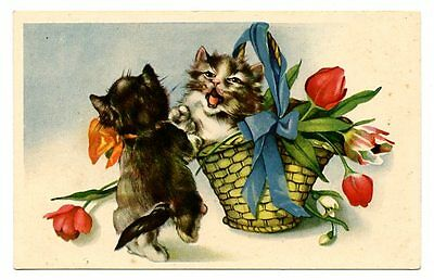 vintage cat postcard adorable cats & basket of tulips flowers