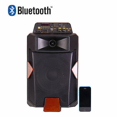 "Portable Trolley Speaker w Microphone 8"" 60w, Karaoke, BT,FM Radio,MP3 Playback"