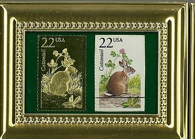Brilliant Cottontail P.c.s. Framed 22K Gold Reflection & Fdc Postmarked Original