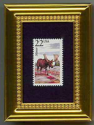 Moose  -   A Glass Framed Collectible Postage Masterpiece!