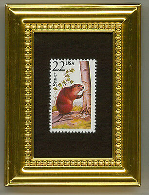 Beaver  - A Collectible Glass Framed Postage Masterpiece!