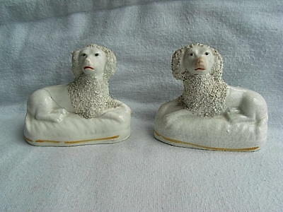 Pair 19th Century Staffordshire Pottery Recumbent Poodles Figures