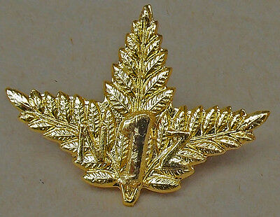 "WW1 New Zealand First REINFORCEMENTS Cap Badge ""Triple Fern"" Type Kiwi ANZAC"