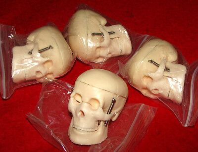 4 Old Mini Plastic Human Skull w/ Articulated Jaws - Cranium Removable Halloween