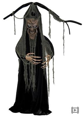 Hanging Tree Man Super scary Halloween Prop (non-animated)