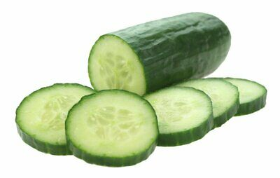 CUCUMBER Muncher Burpless 15 Seeds EASY HEIRLOOM Vegetable Garden Veggie SALAD