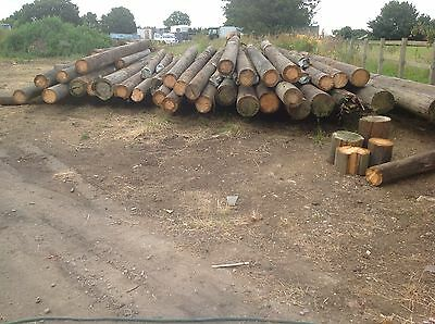 Used Telegraph Poles and Electrical Poles