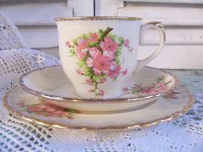 Vintage Grindley Cup Saucer & Plate Trio Shabby Blossom