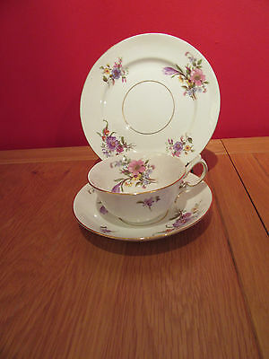 Stunning Antique  bone china Footed cup , saucer & tea plate trio