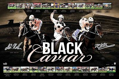 Black Caviar Signed Limited Edition Farewell To A Legend Retirement Print