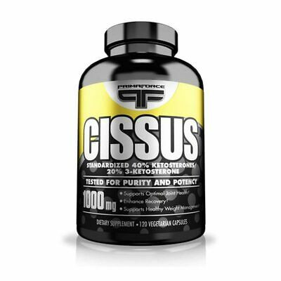 Primaforce Cissus 1000mg 120 Caps Joint Support Recovery Weight Management