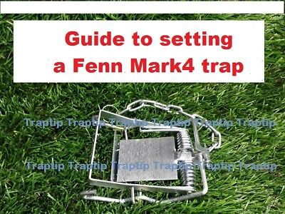Guide to setting a Fenn Mark4 trap plus valuable GIFT