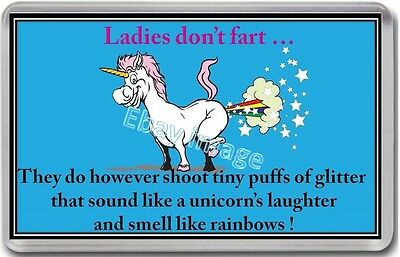 Unicorn Fridge Magnet Sister Friend Funny Fart Adult Christmas Large New
